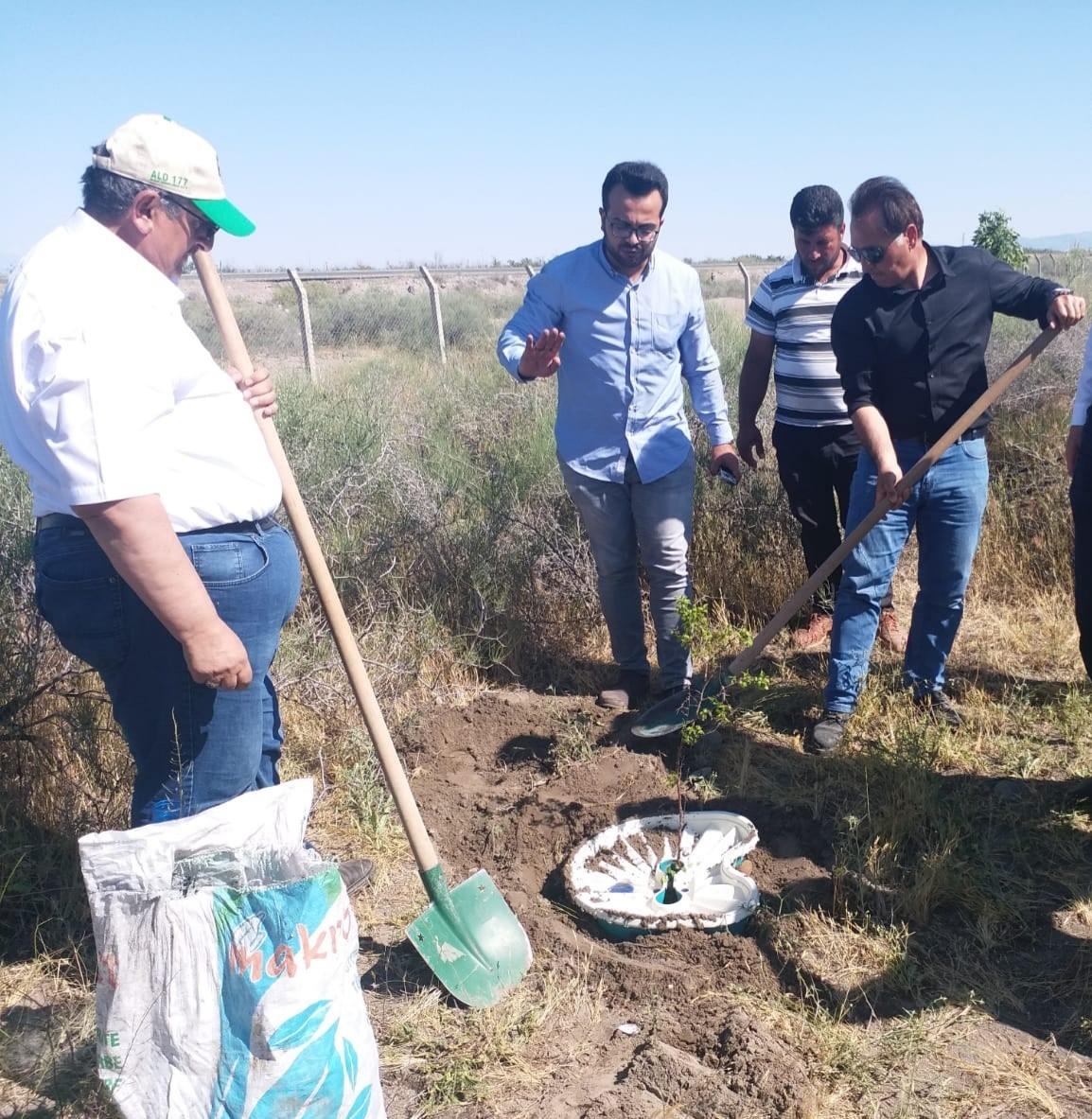 Iğdır Aralık ilçesinde sulamasız ağaç yetiştirme teknolojisi Ekobox ile farklı türlerde denemeler başlatıldı.